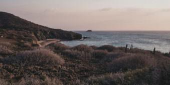 Blick über eine Weise mit Blick auf das Meer.