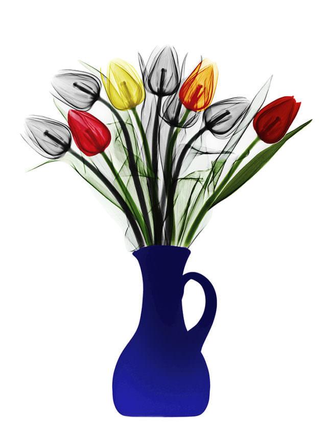 Blumen in einer Vase.