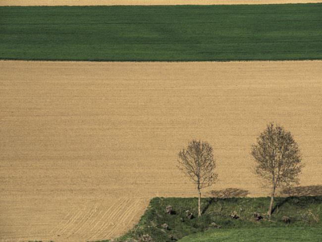 Felder von oben