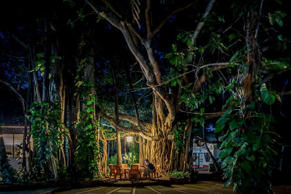 Sitzgruppe unter einem Baum