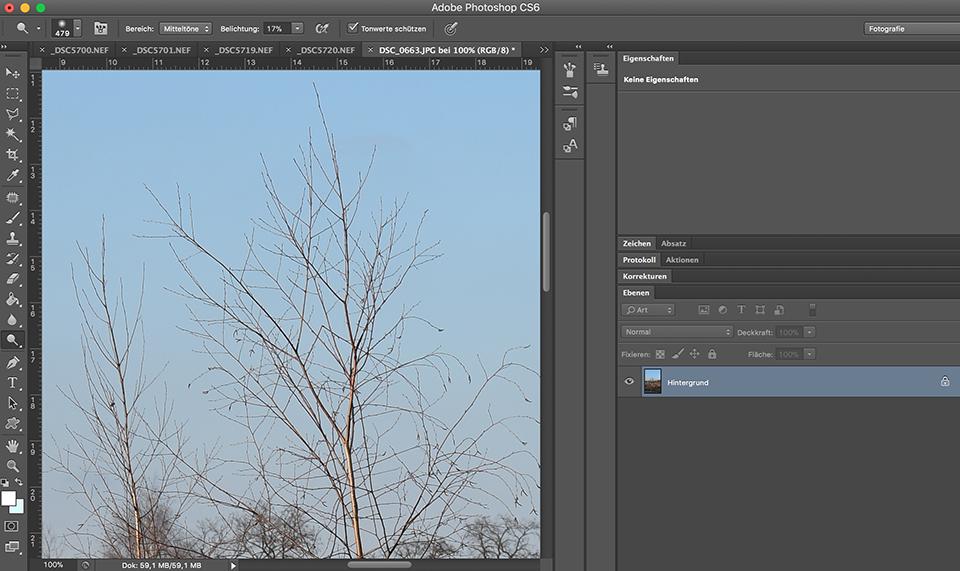 Photoshop-Bearbeitungsoberfläche mit dem Bildausschnitt eines Baumes.