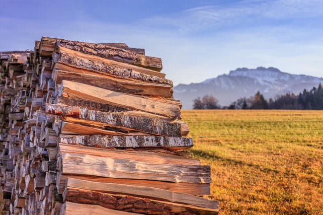 Holzstapel vor Landschaft