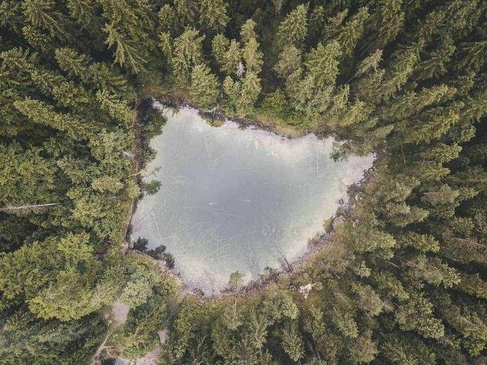 See im Wald von oben