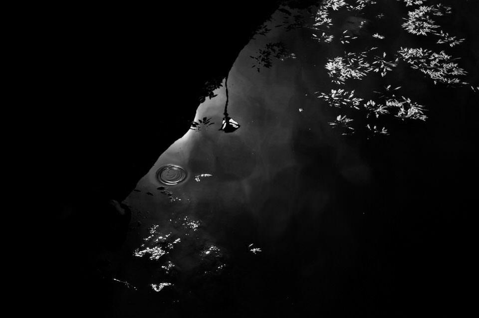 Spiegelung im Wasser