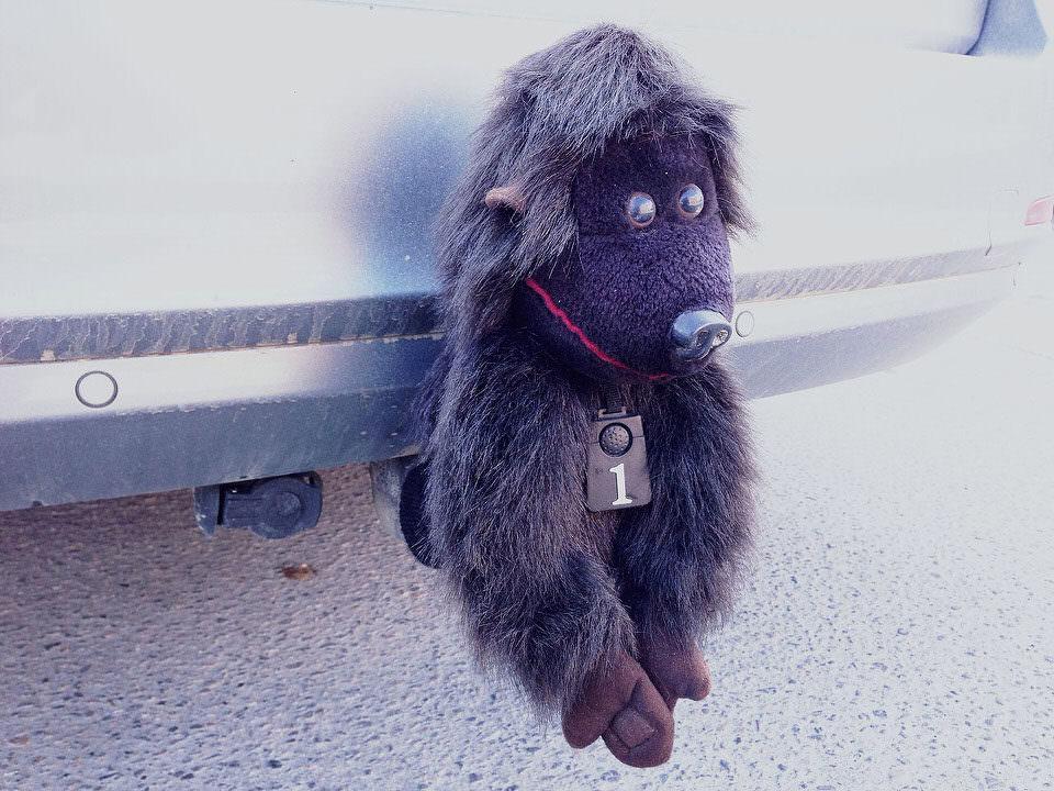 Affe auf Anhängerkupplung