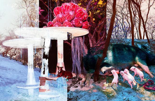 Überlagerung von mehreren Bildern mit bunten Farben und verschiedenen Inhalten.