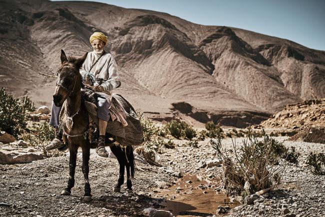 Mann auf einem Pferd