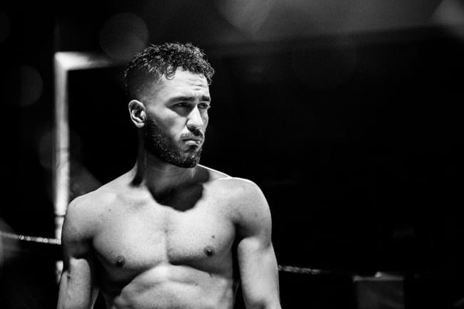 Boxer im Ring