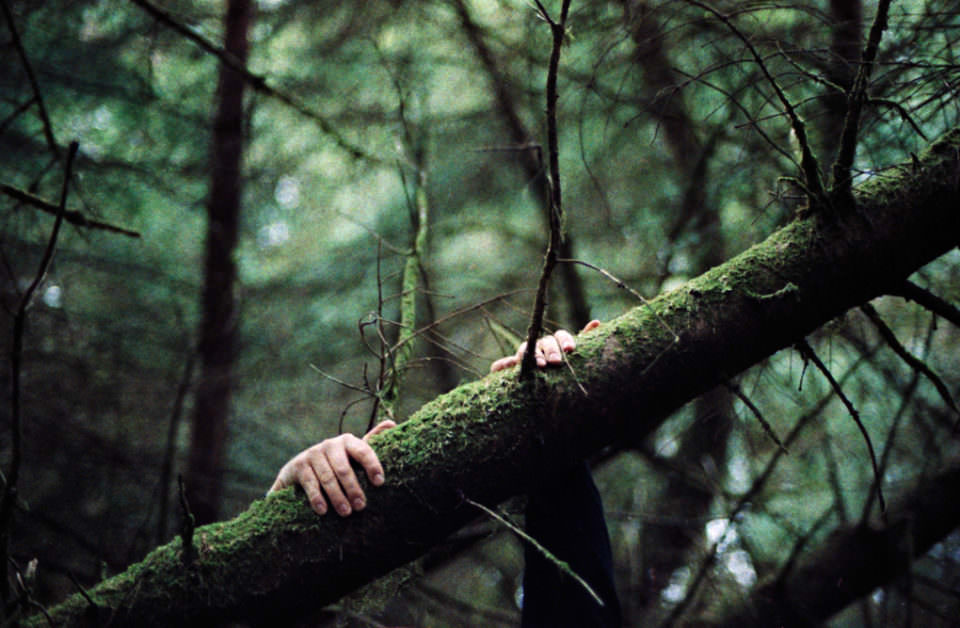 Hand am Baum