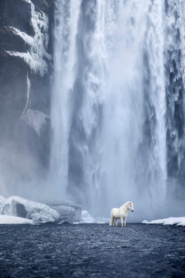 Pferd vor einem Wasserfall