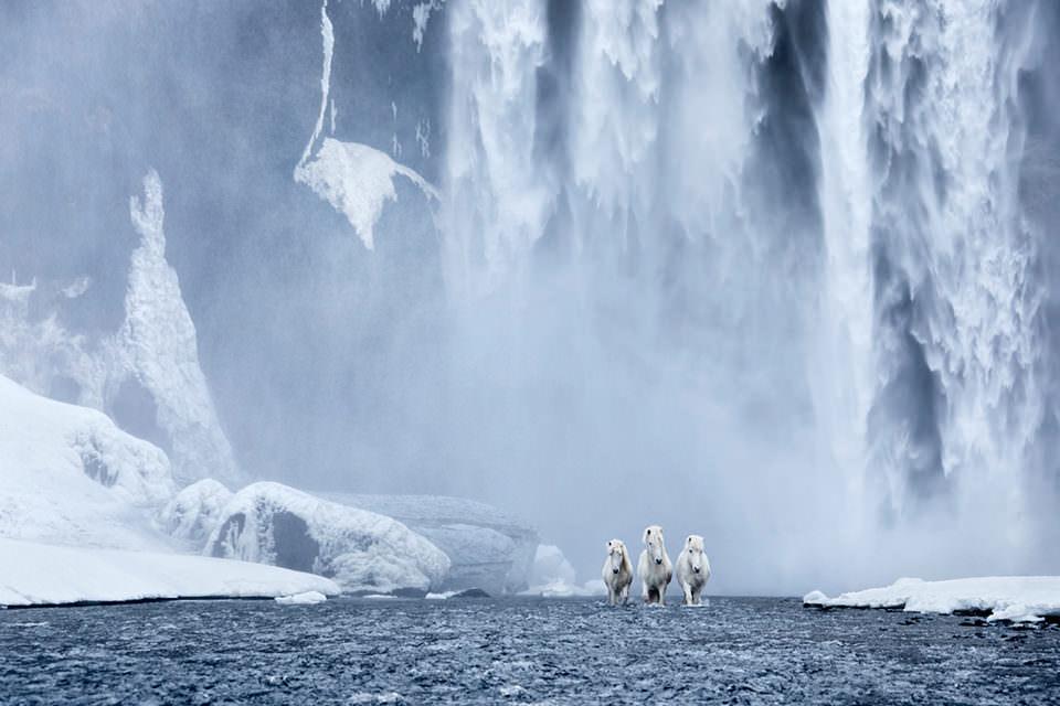 Pferde vor einem Wasserfall
