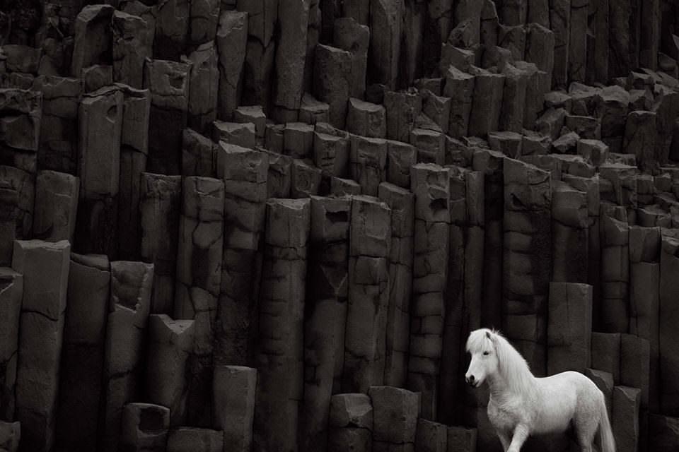 Pferd vor surrealer Steinlandschaft