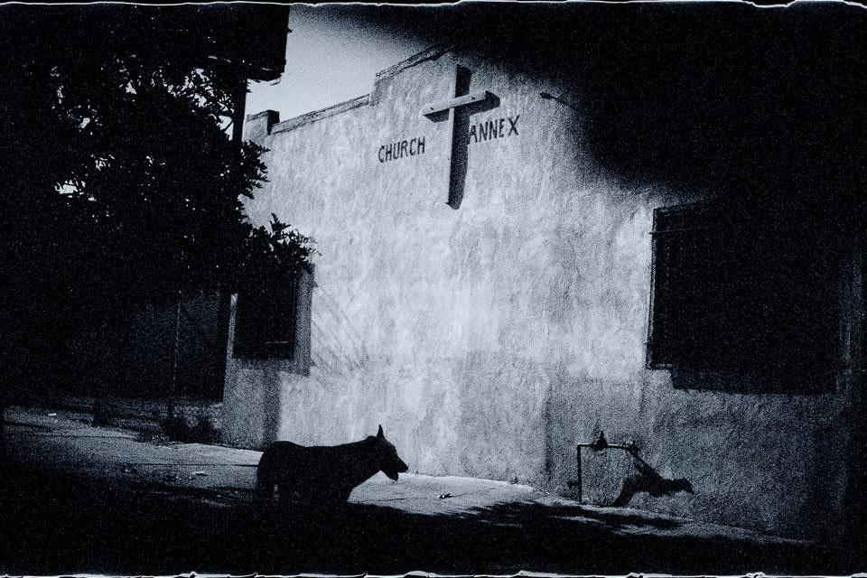 Hund unter einer Mauer mit Kreuz