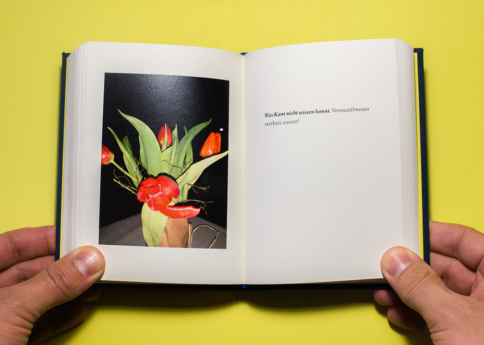 Blick in eine Buch mit Bild und Text