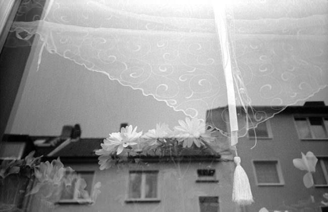 Spiegelung eines Hauses in einer Scheibe mit Gardine.