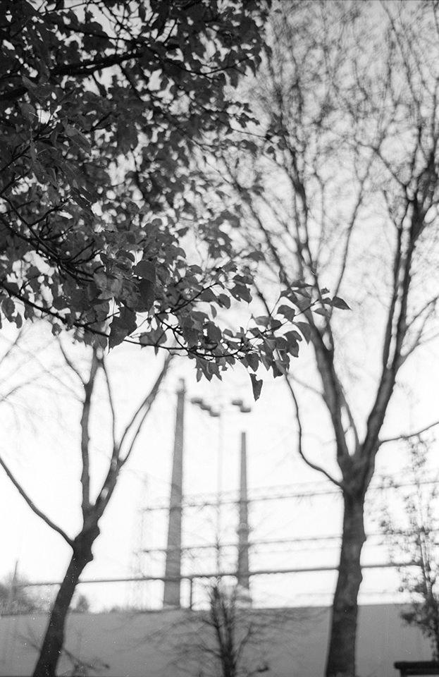 Fördertürme und Bäume