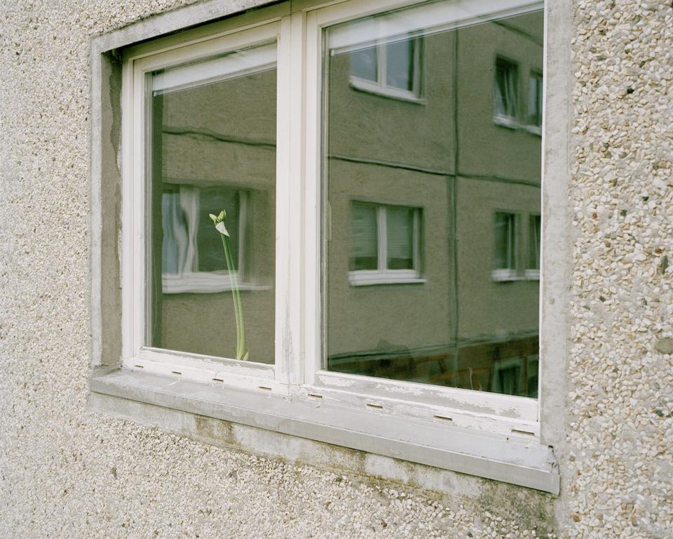 Ansicht eines Fensters mit Spiegelung eines Gebäudes.