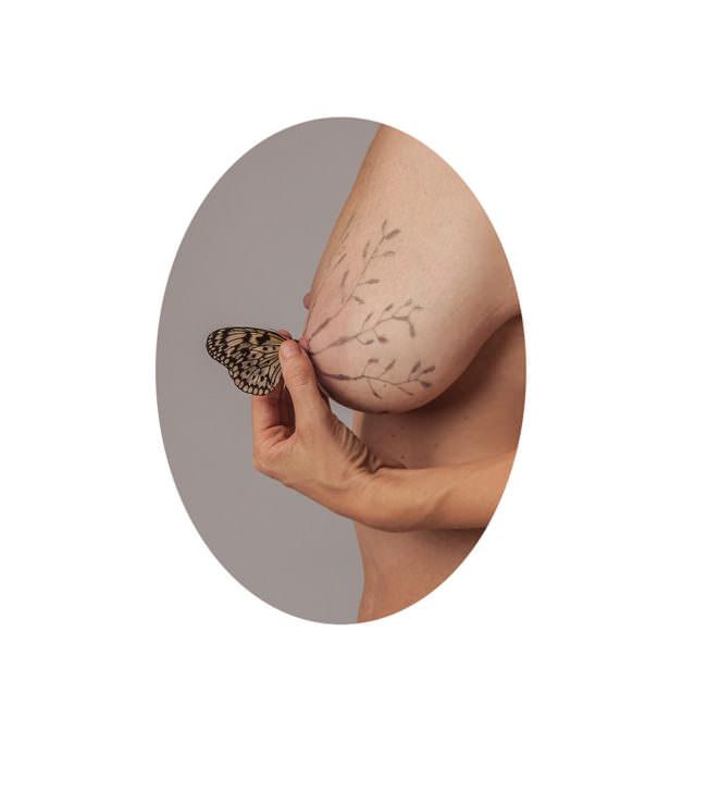 Brist mit Schmetterling und Zeichnungen