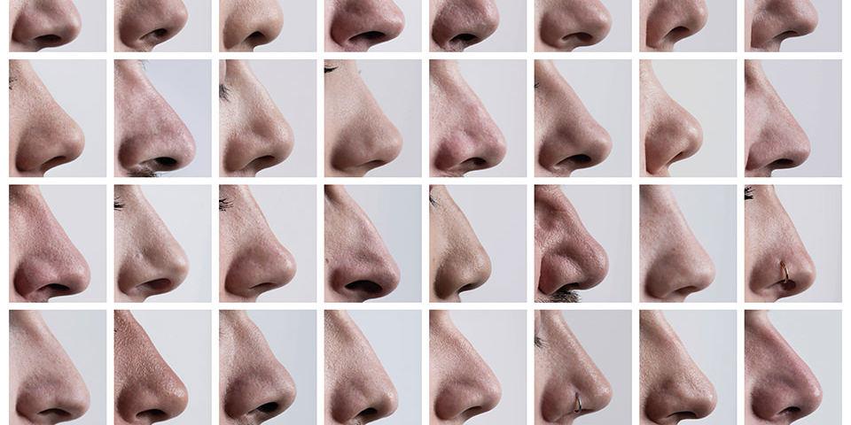 Viele menschliche Nasen von der Seite.