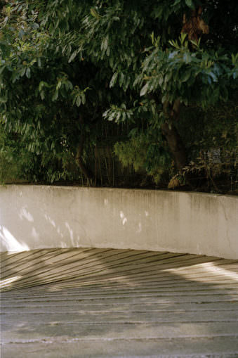 Treppe mit Mauer, dahinter Pflanzen.