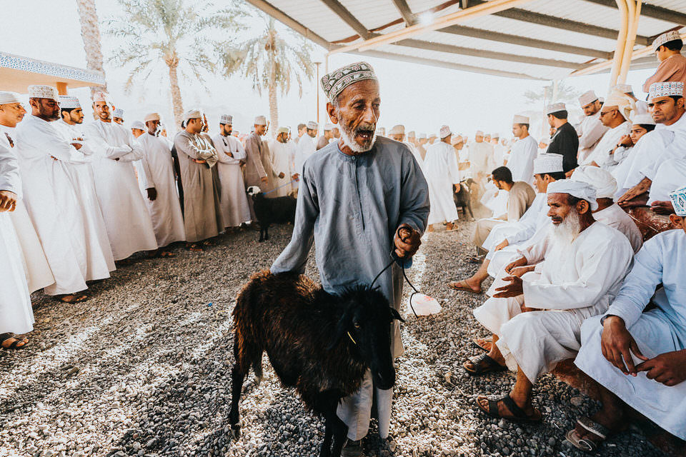 Ziege wird auf Viehmarkt angepießen