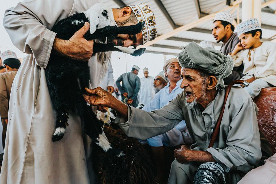 Ziege wird von einem Händler gezeigt