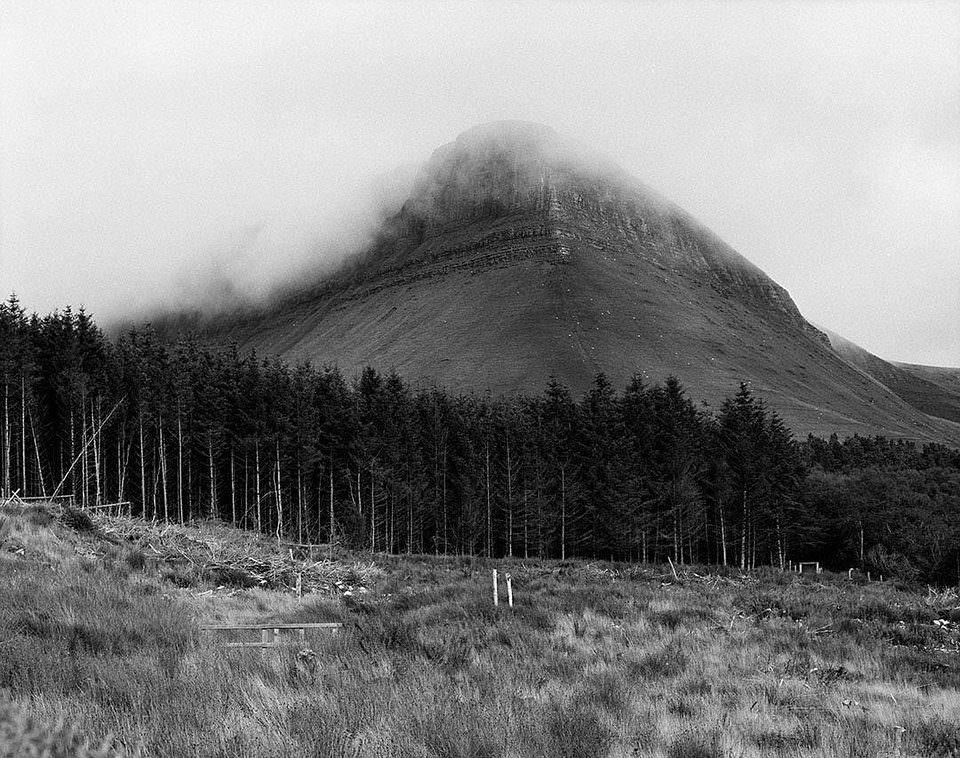 Offenes Feld, dahinter Wald und ein Berg, der in tiefhängenden Wolken verschwindet.