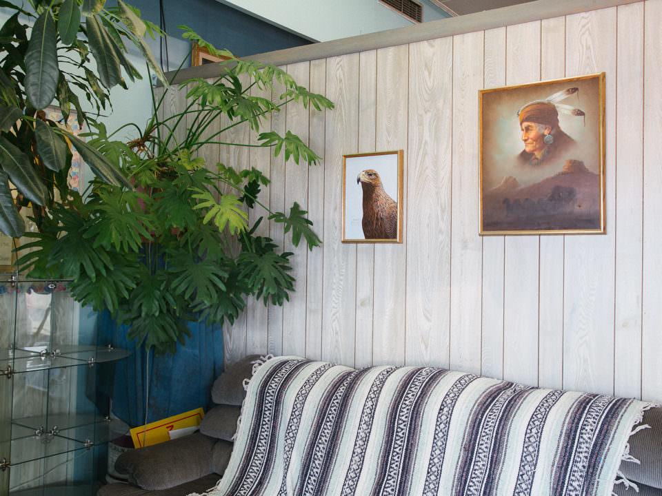 Zimmeransicht mit Pflanze und Bildern an der Wand.