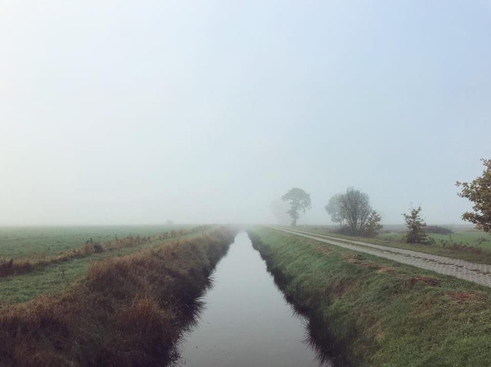 Bach im Nebel