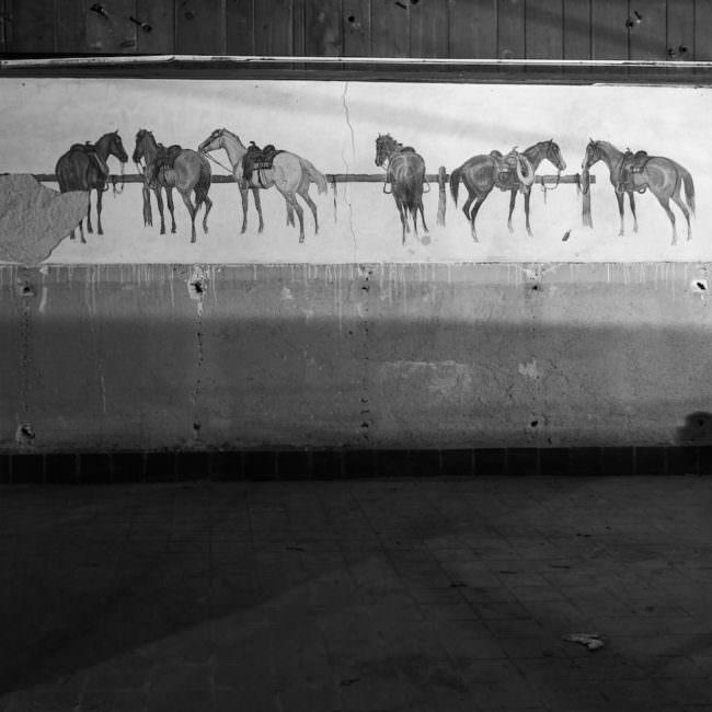 Gemälde mit Pferden an einer alten Wand