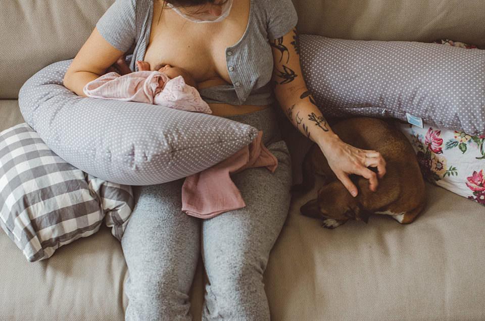 Frau stillt Baby und streichelt Hund