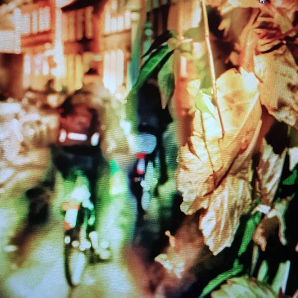 Doppelbelichtung mit Fahrradfahrer und Laub