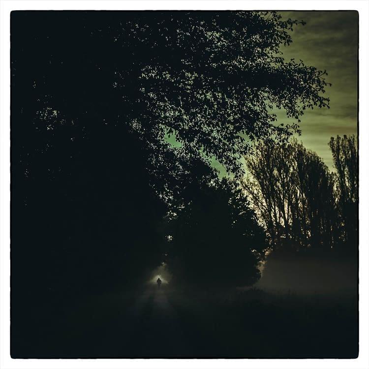 Person geht einen dunklen Pfad unter Bäumen entlang