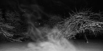 Aufgewirbelter Schnee zwischen Bäumen