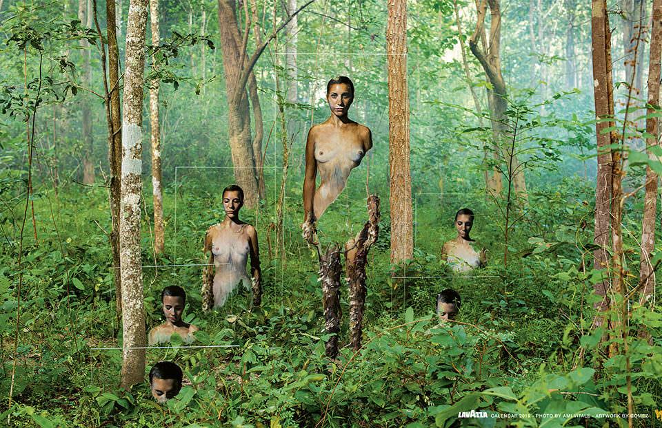 Kunstinstallation im Regenwald