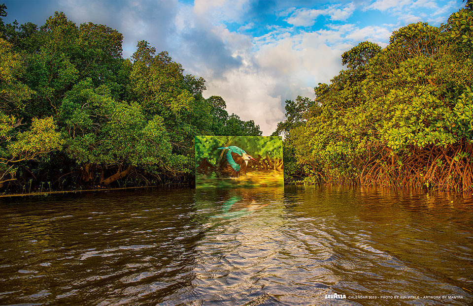 Ein Gemälde im Amazonas