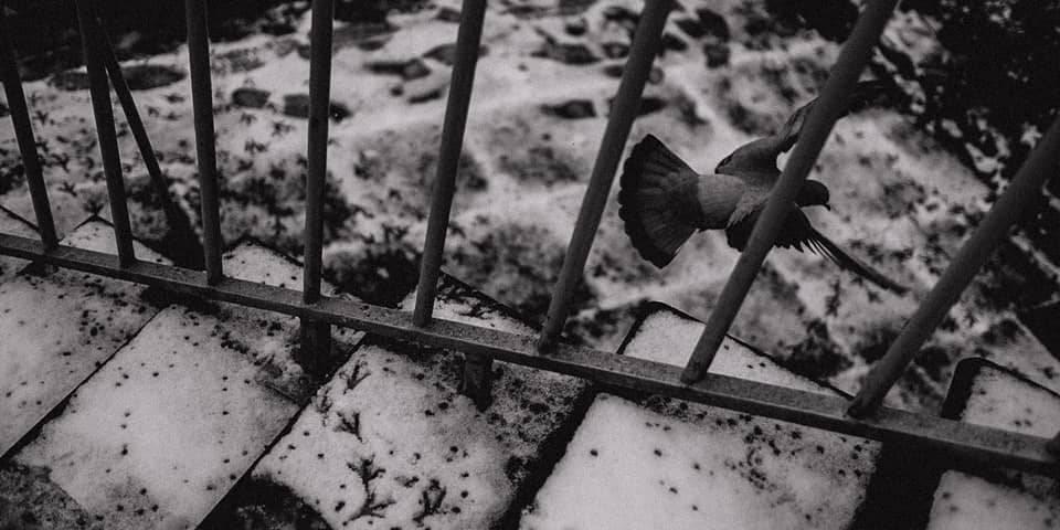 Im Schatten leben – Auf der Straße mit Sebastian Trägner - kwerfeldein – Magazin für Fotografie