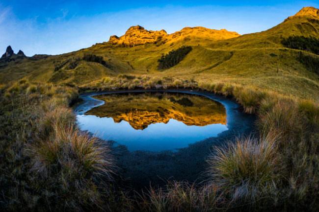 Landschaft spiegelt sich in einer Pfütze