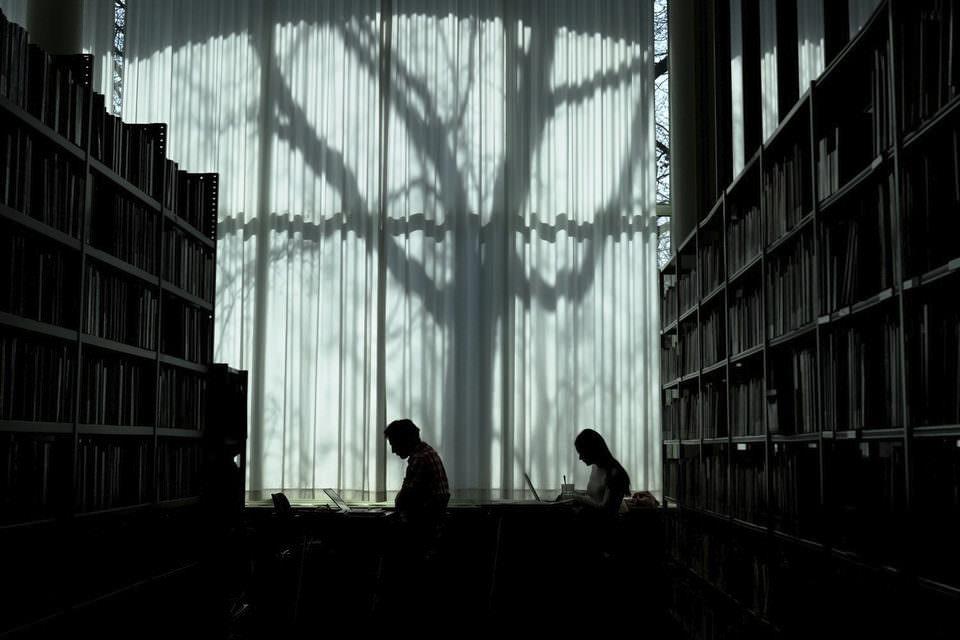 Zweimenschen in der Bibliothek