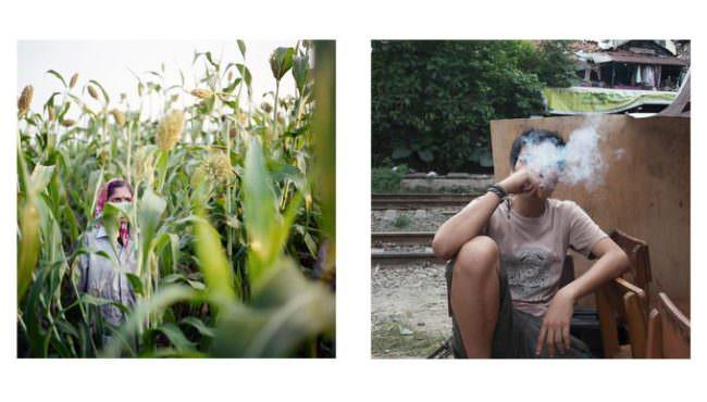 Zwei Bilder: Eine Frau zwischen Pflanzen stehend und eine rauchende Person