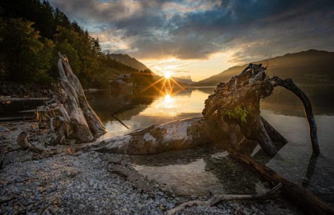 Sonnenuntergang an einem see mit Baumstamm im Vordergrund