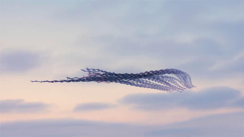 Flugspuren von Vögeln am Himmel