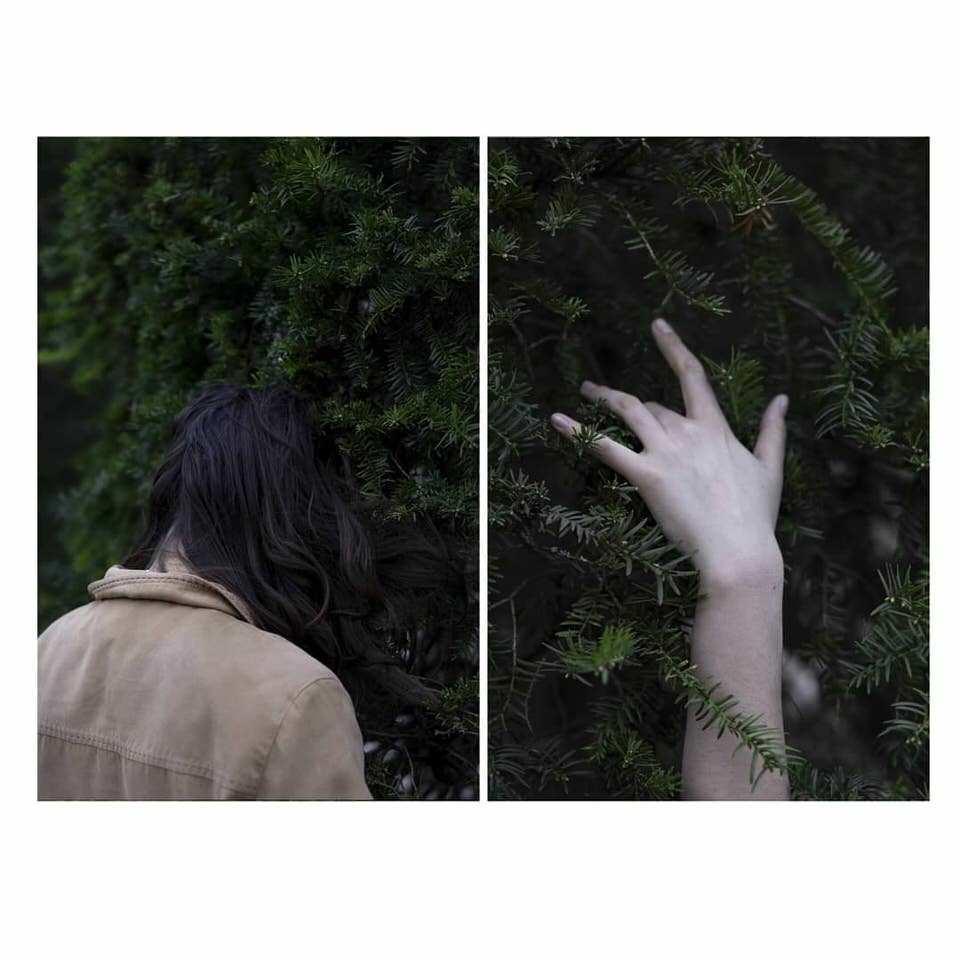 Collage von Frau mit Kopf und Hand in einer Hecke