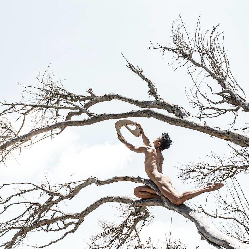 Nackter Mann auf einem Baum mit E