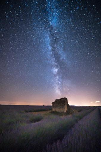 Milchstraße über einem Feld