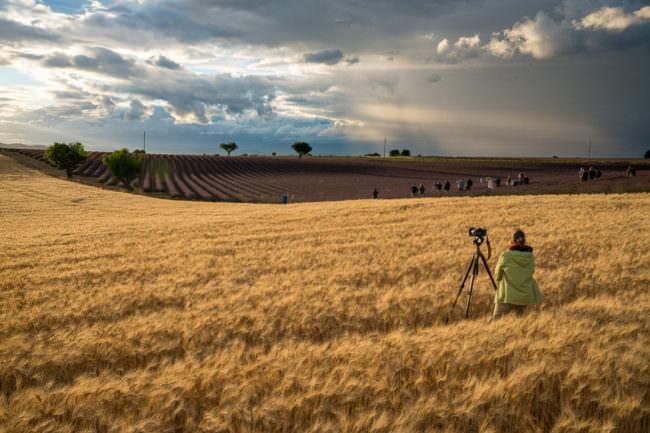 In einem Feld mit vielen Fotograf*inen