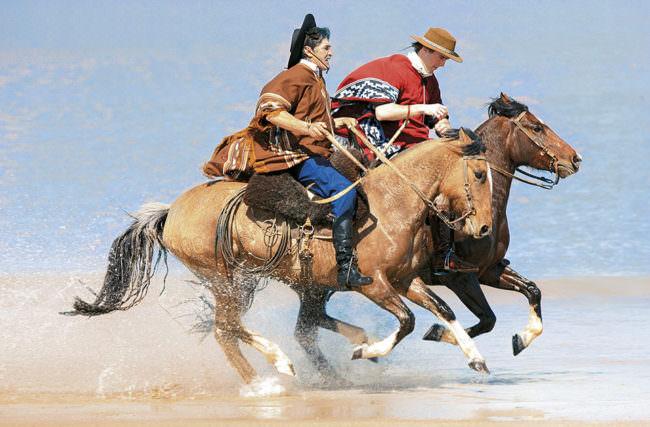 Zwei Reiter am Wasser