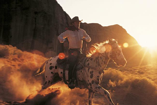 Cowboy auf einem Pferd