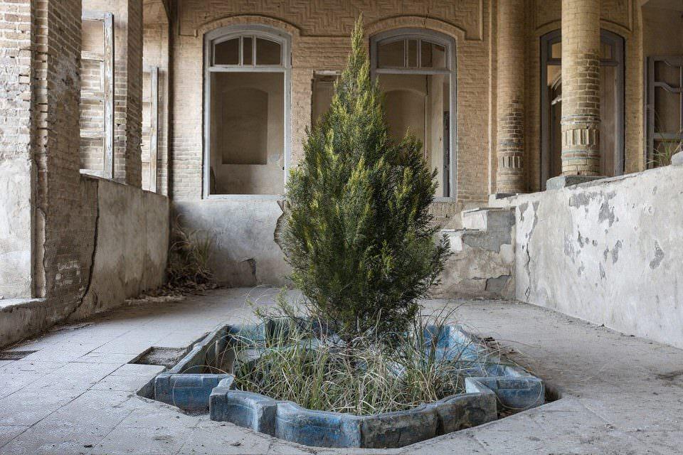 Verlassener Raum mit einem Baum