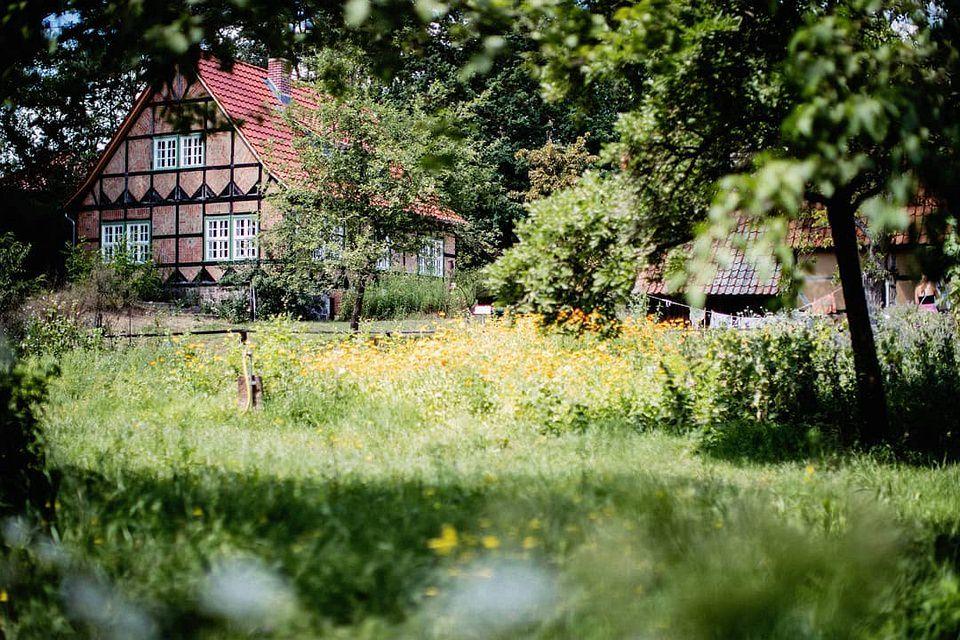 wilde Blumenwiese vor einem Fachwerkhaus